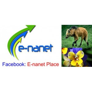 Facebook E-nanet Place